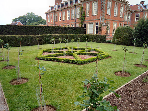 Hexagonal box parterre bordered by yew hedges
