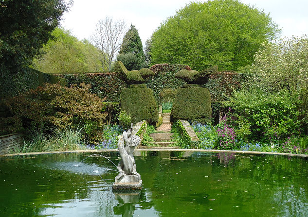 Looking from the pond garden
