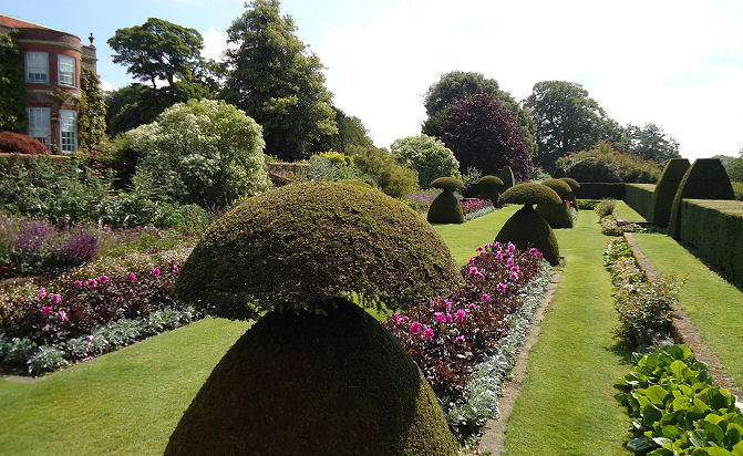 Flower beds set off by topiary. Heaven
