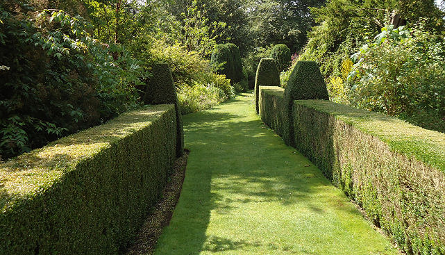 Stately box hedging lining the walks