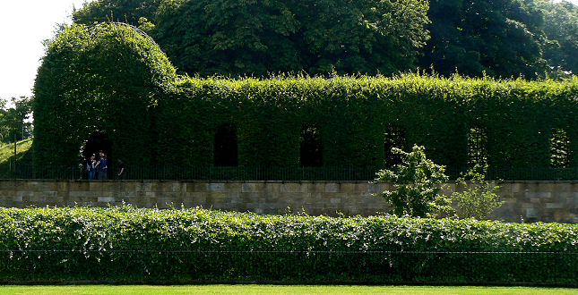Terraced hedges with windows cut into them flank each side of the cascade