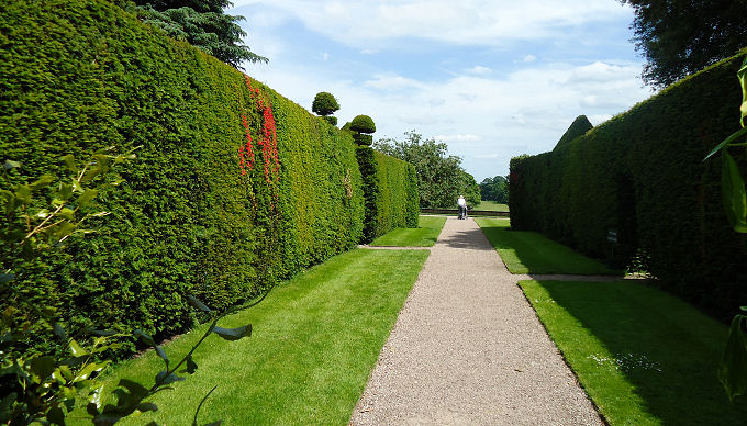 High yew hedge borders with cake stand finials