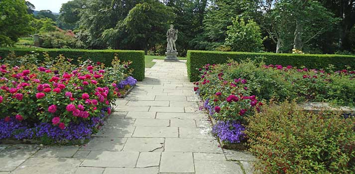 Rose beds flanked by a yew hedge with central statue providing a focal point