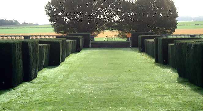 Wonderful battlemented yew hedges at the rear of the house