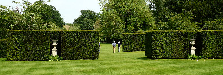 View of free standing yew hedges with urns on stands