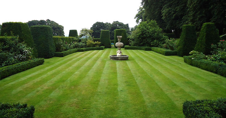 Wonderful hedged lawn