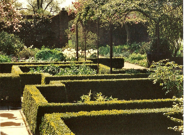 Close up of high hedged parterre