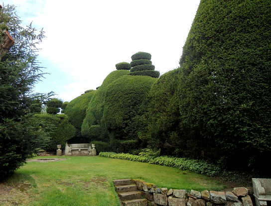 Edge of the topiary garden
