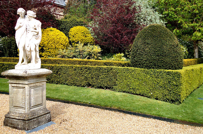 Box Hedges with statuary in foreground