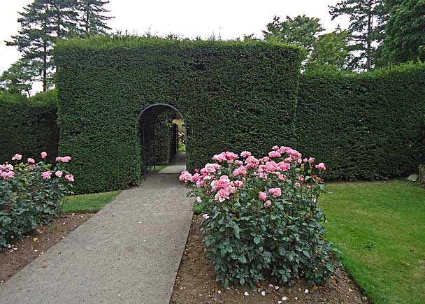 Yew arch entrance to formal gardens