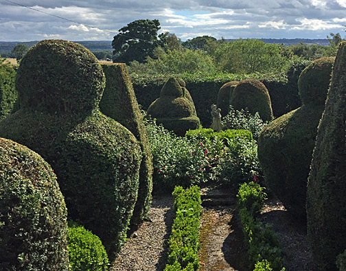 Topiary Garden looking out of the landscape