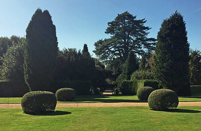 Balance and symmetry between topiary ands specimen trees
